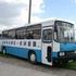 Рождённые в Автобусе